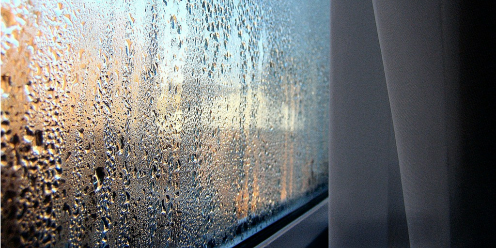 My Conservatory Has Condensation Problems Wetheralds